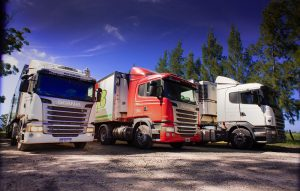 CyB Logistica y Comercialización